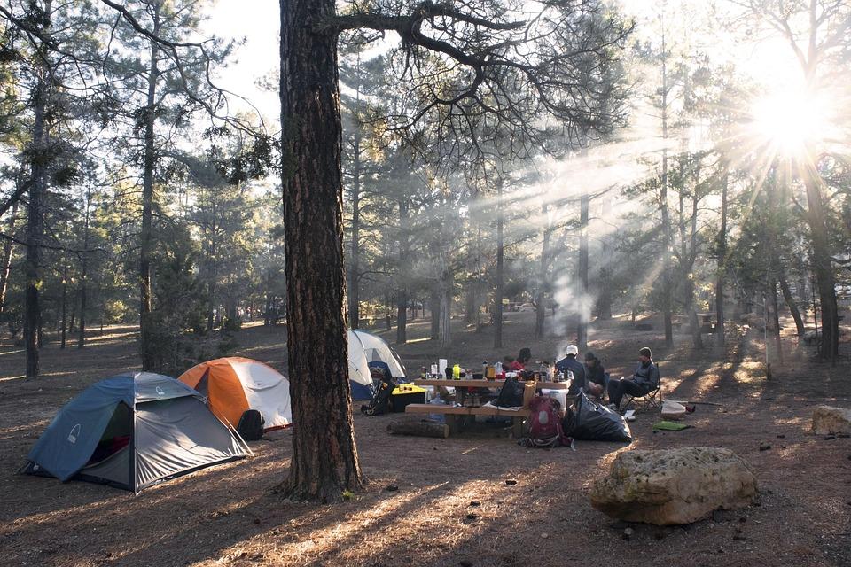 Camping Vagues Océanes les Cabanes d'Oléron